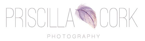 Priscilla Cork Photography, Hills District, Sydney, newborn and family portrait Photographer logo
